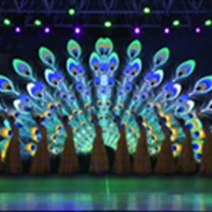 第十四屆澳門媽祖文化旅遊節-文藝晚會(2)